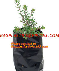 China Poly Planter, Grow Bag, garden bags, grow bags, hanging plant bags, planter, Plastic plan garden bags, garden supply pac supplier