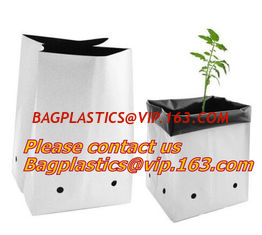 China Flower bags, flower plant bags, planters, poly plant grow nursery bags,Black Polythene Poly Pots, plantin supplier