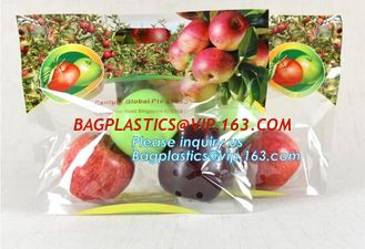 China eco-friendly slider ziplock fruit bag with air holes for grape packaging bag, slider ziplock storage frozen bag with OEM supplier