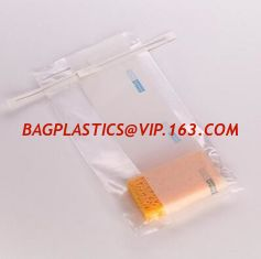 China Microbiology Specimen Collection and Transport, Bacteriostatic Urine Drainage Bag - 2000ml, Sterile, Sampling & Sample S supplier