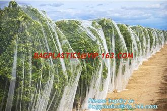 China Plastic Anti Bird/Hail/Insect Plants Protection Net for Agriculture,insect repellent net/20x10 Anti Aphid Net/Greenhouse supplier