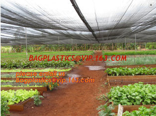 China 30 mesh anti insect farm nets for greenhouse,100% pe transparent color greenhouse anti insect net for plant, agriculture supplier