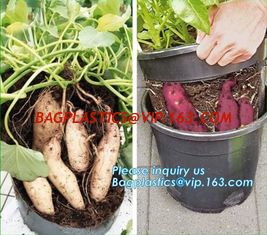 China Tomato Potato Carrot Onion Peanut Growing Pot Garden Planter Pot,PP potato grow pot planting bag, bagplastics, bagease supplier