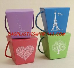China Wholesale China Supply Transparent PVC Material Type Packaging Plastic Box Cake Box for Birthday Cake with Ribbon bageas supplier
