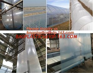 China Agriculture PO film greenhouse clear plastic film,Greenhouse plastic HDPE printed film for bituminous Waterproof Membran supplier