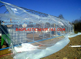 China plastic film agriculture greenhouse,6 mil poly anti-uv plastic greenhouse film,Anti-fog UV resistant,mushroom,TOMATO PAC supplier