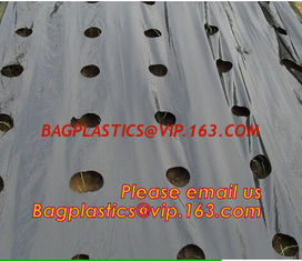 China Perforated plastic mulch film save drilling troubles,perforated agricultural plastic mulch film,perforated white/black m supplier