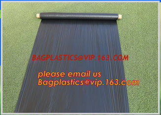 China Silver Black Perforated Plastic Mulch Film with Punch Hole,biodegradable perforated plastic mulch film,Perforated plasti supplier