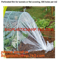 China plastic tomatoes home garden polytunnel greenhouse film,Film Covering Tomato Planting Greenhouse,agricultural TUV polyet supplier