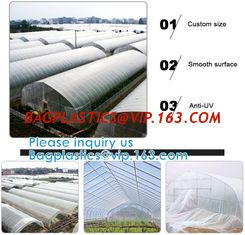 China 200 Micron Uv Resistant Film Greenhouse Perforated Mulch Agricultural Film Vegetable Planting supplier