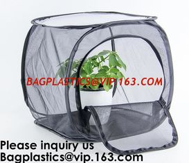 China Agricultural Greenhouses for Tomato Planting,Pop-Up Tomato Plant Protector Serves as a Mini Greenhouse to Accelerate Gro supplier