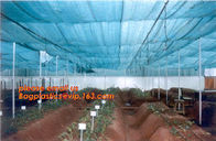 China agriculture anti insect net on roll insect proof mesh for greenhouse,Greenhouse Anti Insect Netting /Agriculture Netting factory