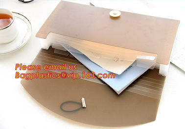 China new popular a4/letter size plastic pp poly Expandable Desk top file folder organizer factory