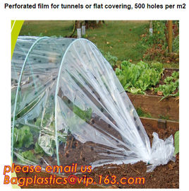 China plastic tomatoes home garden polytunnel greenhouse film,Film Covering Tomato Planting Greenhouse,agricultural TUV polyet factory