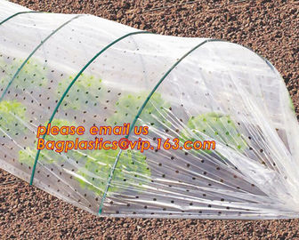 China high light transmittance solar control seeding nursery greenhouse covers,100% virgin LDPE protective single layer cucumb factory
