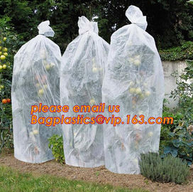 China PP Non Woven Fabric Fruit Tomato Banana Bunch Cover Garden Plant Protection Cover For Winter,Eco-friendly Household Non factory