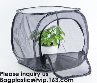 China Agricultural Greenhouses for Tomato Planting,Pop-Up Tomato Plant Protector Serves as a Mini Greenhouse to Accelerate Gro factory