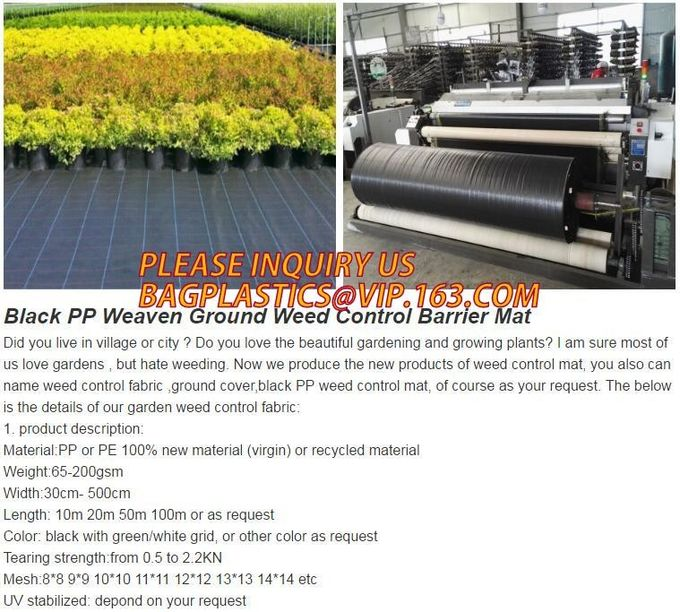 Panda Film for Blackout Greenhouse/Black-White Poly is UV-Stabilized Plastic Mushroom,0.1mm 0.12mm 0.15mm 0.18mm 0.2mm 0