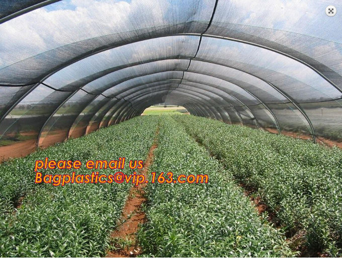 HDPE Virgin White Recycle Greenhouse Anti Insect Net,50 mesh cover greenhouse agricultural anti insect net insect nettin