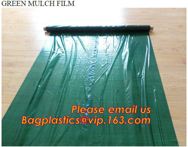 Perforated plastic mulch film save drilling troubles,perforated agricultural plastic mulch film,perforated white/black m